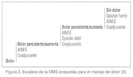 Dolor Oseo Inducido Por Cancer Metastasico Fisiopatologia Y Tratamiento