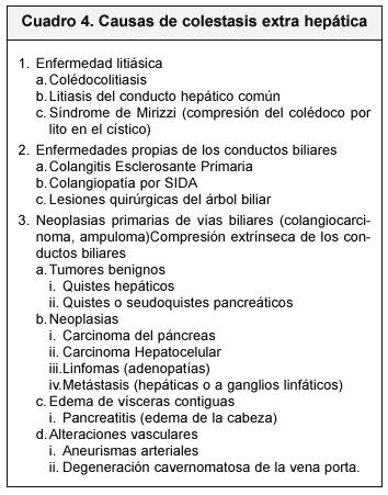 El Enfoque Del Paciente Ict 233 Rico