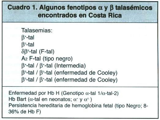 RASGO TALASEMICO PDF