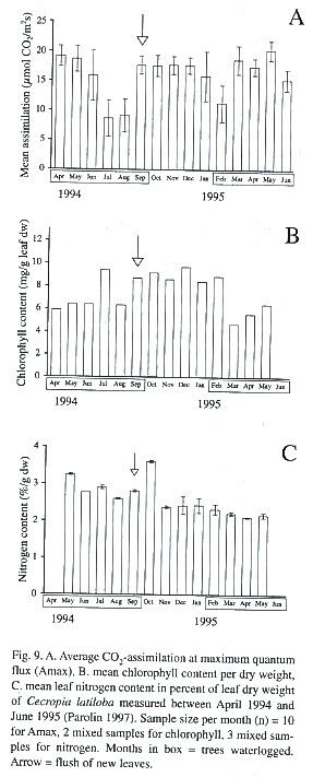 chlorophyll fluoreszenz versuch