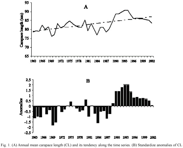 Decadal variability in growth of the Caribbean spiny ... | 615 x 496 jpeg 47kB