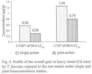testing approaches bioaccumulation