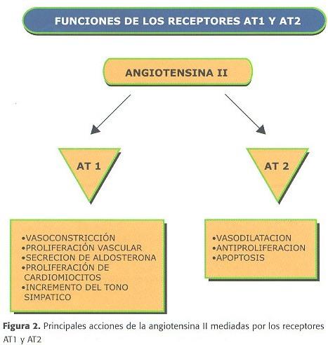 efectos secundarios estanozolol landerlan