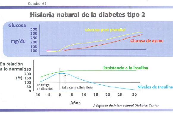 diabetes tipo 2 secreción de insulina niveles normales