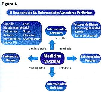 La eccema y la dermatitis a varikoze el tratamiento