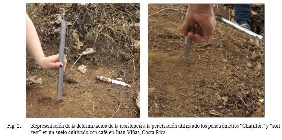 Penetration resistance tangential shear strength bulk for Suelo vinilo al corte