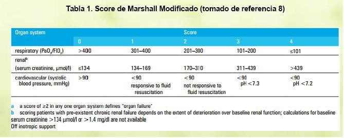 Pancreatitis Aguda Revision De Las Nuevas Guias Del 2013