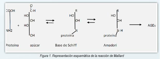Etapa de hipertensión avanzada de productos finales de glicosilación