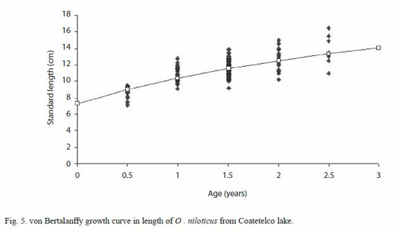 Age And Growth Of The Tilapia Oreochromis Niloticus Perciformes