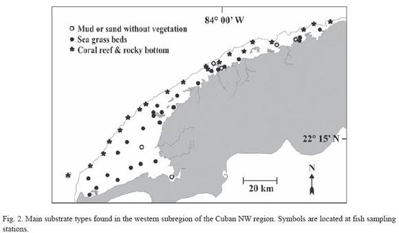 Subregiones de la region caribe yahoo dating