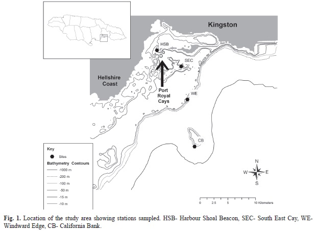 The planktonic communities of the Jamaican southeast coast a