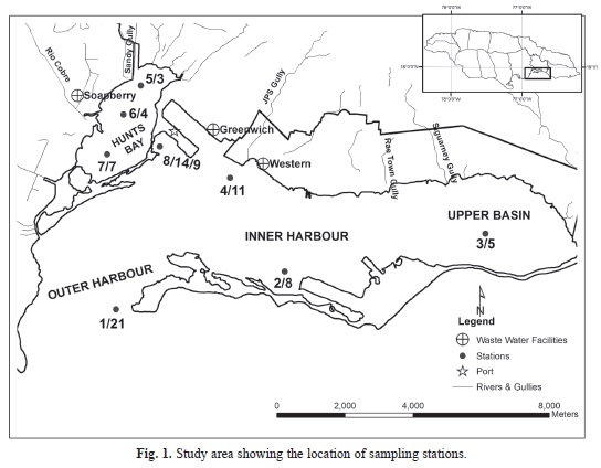 Rapid reassessment of the eutrophication status of Kingston