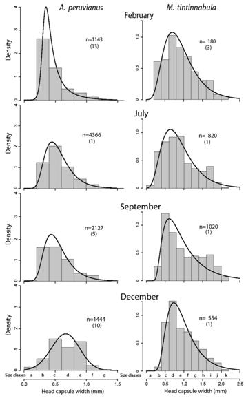 Life Cycles Of Dominant Mayflies Ephemeroptera On A Torrent Of The